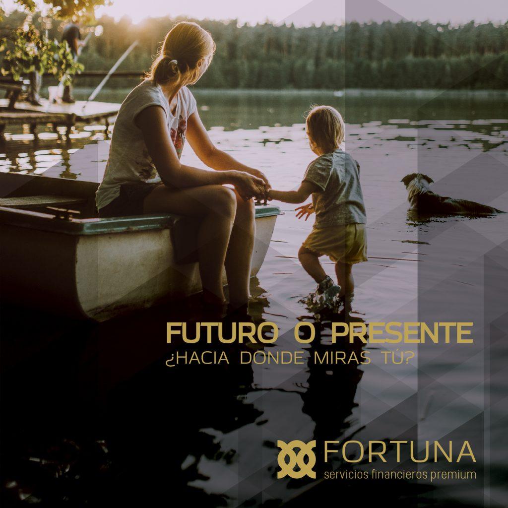 Web Fortuna Servicios Financieros Premium
